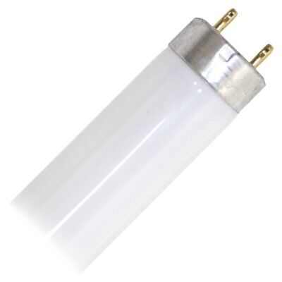 "Eiko 15521-1 F15T8/CW Straight T8 Cool Fluorescent Tube Light Bulb, 18"" Long, wh"