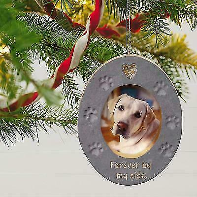 Hallmark Keepsake 2019 Forever By My Side Pet Memorial Photo Frame Ornament