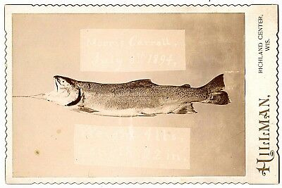 "TROPHY FISH  4lbs 22"" by HILLMAN of WISCONSIN 1894 CABINET CARD PHOTO - FISHING"