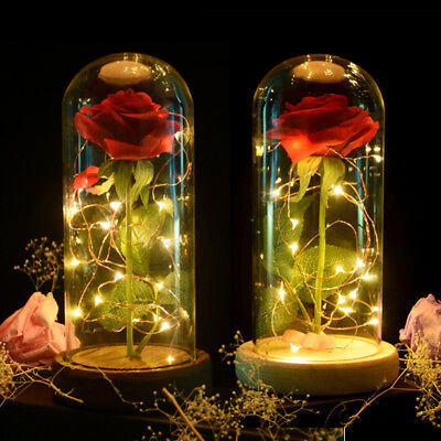 Beauty And The Beast Rose La Bella E La Bestia Rosa Fiori Eterni Led Lamp