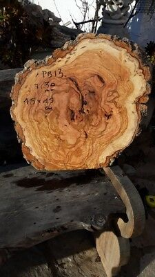 Madera de Olivo  30mm.  BURR live edge PB13----105 euros, transport incluido UK
