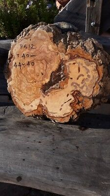 Madera de Olivo  40mm.  BURR live edge PB12----105 euros, transport incluido UK