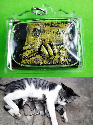 15195-Thai Love Charming Amulet Mother Cat Breast Feed Baby Mouse Oil 8Takud Tah