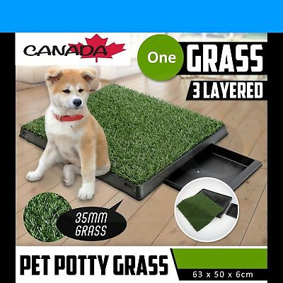 Indoor Puppy Potty Tray Large Pet Toilet Loo Grass Mat Potty Training Portable