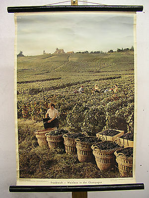 Schulwandkarte Beautiful Old France Grape Harvest Champagne 50x72 Vintage