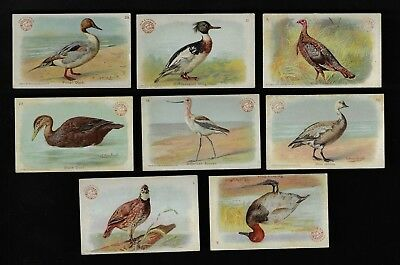 """8 Arm & Hammer Baking Soda Cards, Our New Cards """"Game Bird Series"""""""