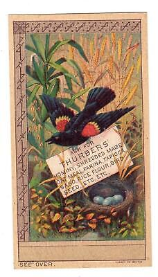 Thurber's Hominy Shredded Maize Oatmeal Bird Seed*victorian Trade Card*forbes