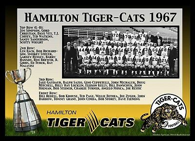 CFL 1967 Grey Cup Champions Hamilton Tiger Cats Team Picture 8 X 10 Photo ee1a0fd49