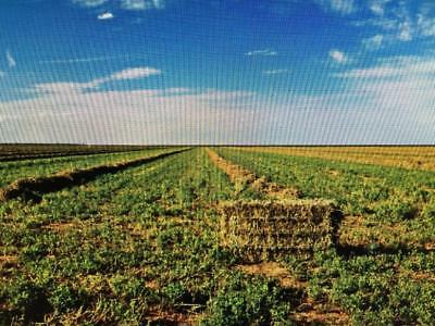 11.07 Acre West Texas Ranch Mineral Rights Included ! No Limits To Build !
