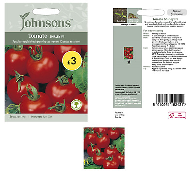 Johnsons Tomato Shirley F1  Seeds  - Greenhouse Indoor sowing - Exp. 2022