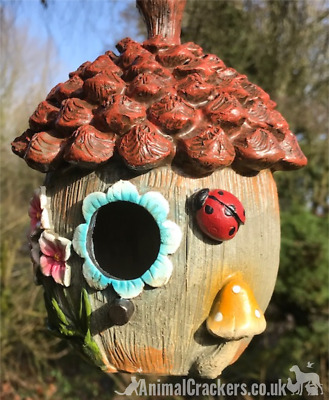 Novelty ladybird & flower decorated ACORN shape weatherproof BIRD HOUSE NEST BOX