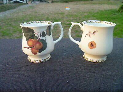 2 Fine China QUEENS Royal Horticultural Society Hookers Fruit APRICOT Footed Mug