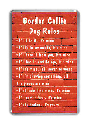 Border Collie Dog Rules, Funny Dog Fridge Magnet Pet Animal Lover Novelty Gift