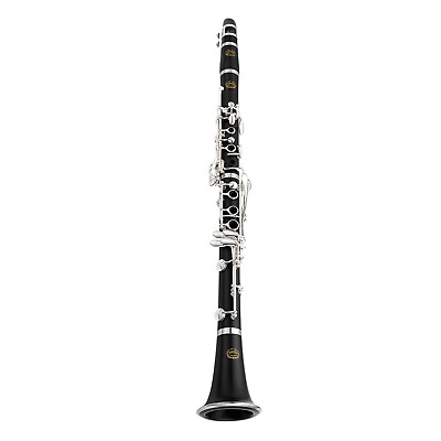 YAMAHA Gigmaker 310 Steel String Acoustic Guitar Pack Bag Strap Tuner Capo DVD
