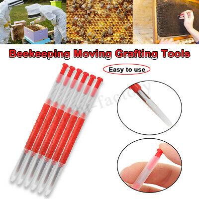 10 x Beekeeping CHINESE QUEEN REARING GRAFTING TOOLS - Retractable end  TOP