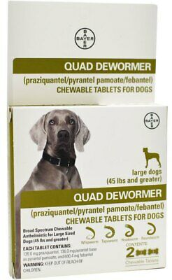 Bayer Quad Dewormer for Large Dogs 45 lbs. and up 2 Chewable Tablets 11/2020