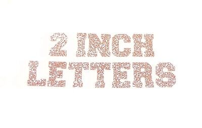 varsity college iron on t shirt transfer patch letter applique rose gold glitter