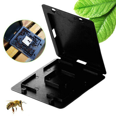 Plastic Black Beekeeping Beehive Hive Beetle Trap Case Cover Insect Collector
