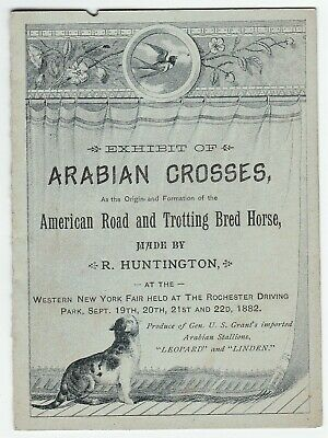 RARE Advertising Brochure - Arabian Cross Horse Show US Grant  1882 Rochester NY