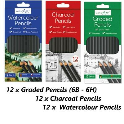 12 Artist Pencils Set Water Colour,Graded Sketching,Charcoal Drawing Art Craft
