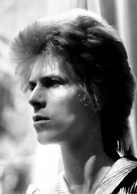 """Reproduction """"David Bowie - Black & White"""" Poster, Home Wall Art, Vintage Print"""