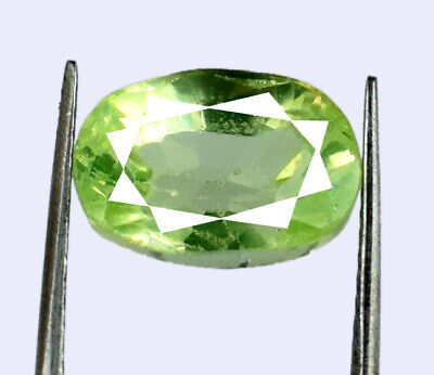 Oval Pakistan Peridot August Birthstone 6.70 Ct 100% Natural AGI Certified G1716