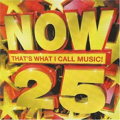 Various Artists : Now Thats What I Call Music 25 (South Af CD