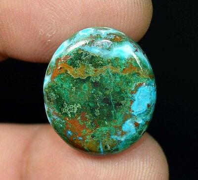 Aaa 20.50 Cts. 100% Natural Chrysocolla Oval Cab Loose Gemstones Ladylucklovers