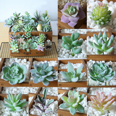 12PCS Artificial Succulent Flocked Plant Fake Cactus Lotus Unpotted Garden Decor