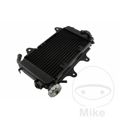 Radiator / Water Cooler KTM Duke 125 ABS 2014