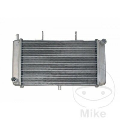 JMP Radiator Water Cooler Derbi GPR 125 2T Nude 2005