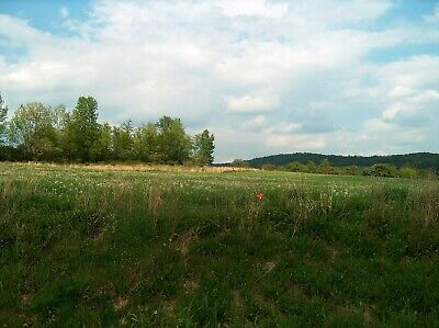 Real estate in New York - Allegany County - 4.93 acres - Views