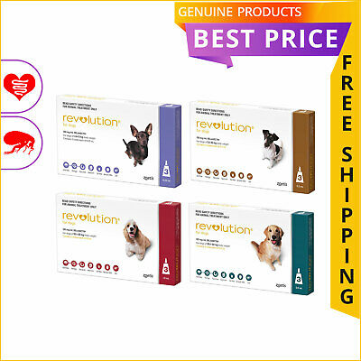 REVOLUTION for Dogs 3 Doses All Sizes Flea and Heartworm Control by Zoetis