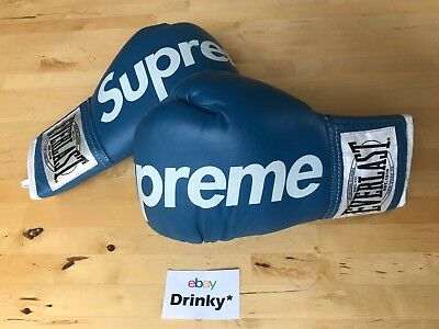 990c7e05 EXTREMELY RARE Blue Supreme Everlast Boxing Gloves 2008 DS FW08 Punching Bag