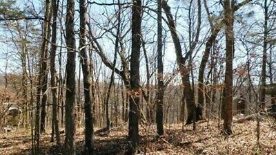 56 Twin Peak Dr., Holiday Island, Arkansas 72631 (Wooded Hillside Building Lot)