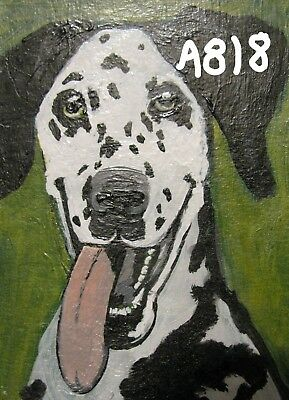 "A818    ORIGINAL ACRYLIC ACEO PAINTING BY LJH  - ""FRIDA"" Dalmation     DOG"