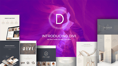 Divi Theme & Builder for WordPress with Themes & Plugins Lifetime Plan