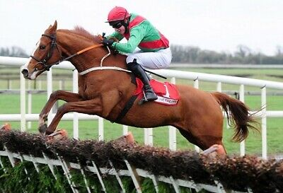 Horse racing betting system guaranteed profits new system beat the bookies