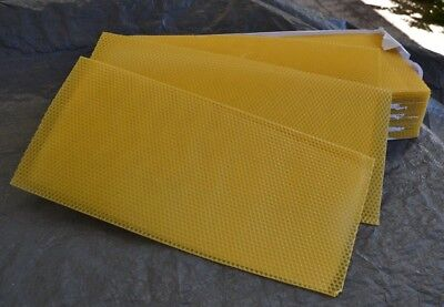 Beekeeping - 10 sheets full depth  beeswax foundation