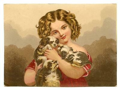 1800's ANTIQUE VICTORIAN LITHOGRAPH*GIRL WITH PUPPIES! COCKER SPANIELS? DOGS