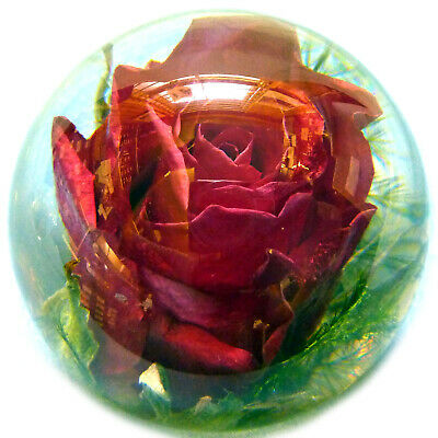 Medium Rose Paperweight made with a real flower