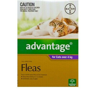 Advantage Flea Control for Cats Over 4kg 3 Tubes