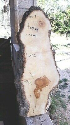 Madera de Olivo slabs boards live edge RE1 - 75 euros, transport incluido UK