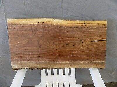 "23""x12"" CURLY Black Walnut Live Edge Bench Table Slab Lumber Board Solid Wood"