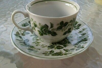 Tamayo China Porcelain Teacup & Saucer Set, With Green Rim & Rose Vine Design