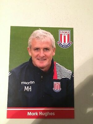 Spelerskaart Mark Hughes Stoke City Topspieler