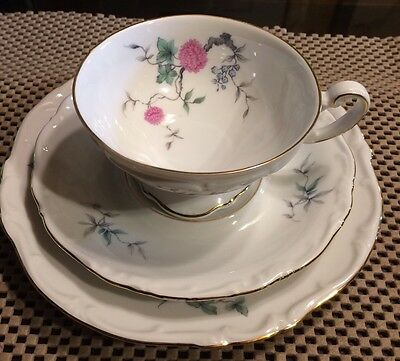 Hertel Jacob Bavaria Pink Floral Trio Tea Cup Saucer and Plate