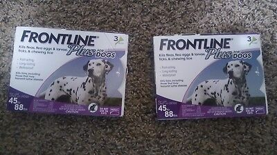 2 BOXES of Frontline Plus for Large Dogs 45-88lbs, 6 Month Supply!!!!