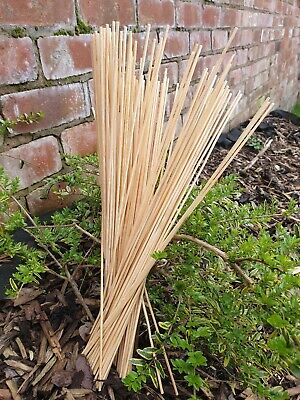 Bamboo Wooden Plant Sticks 25-100 X 40cm Garden Plants Support Canes Flower Cane