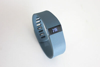 Fitbit Charge Wireless Activity Wristband - Large, Slate